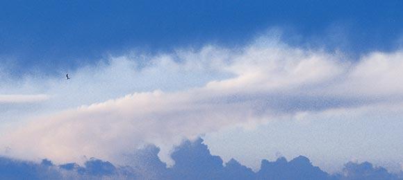 cumulus3